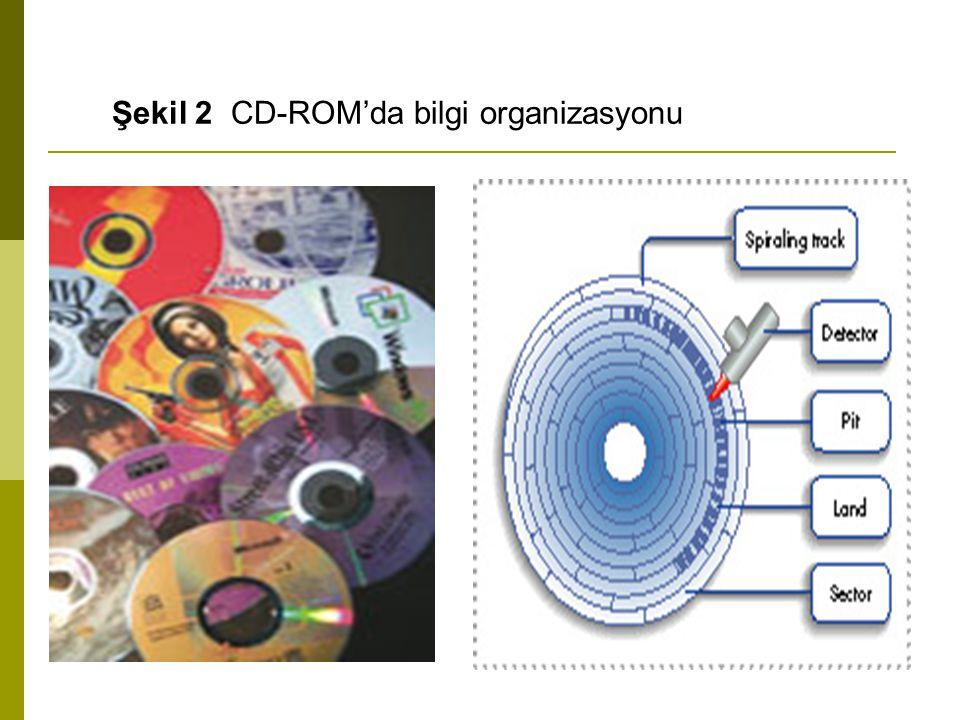 Şekilde bir CD-ROM'da bilgilerin nasıl organize edildiği gösterilmektedir.
