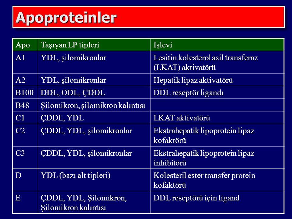 ApoproteinlerApoproteinler ApoTaşıyan LP tipleriİşlevi A1YDL, şilomikronlarLesitin kolesterol asil transferaz (LKAT) aktivatörü A2YDL, şilomikronlarHepatik lipaz aktivatörü B100DDL, ODL, ÇDDLDDL reseptör ligandı B48Şilomikron, şilomikron kalıntısı C1ÇDDL, YDLLKAT aktivatörü C2ÇDDL, YDL, şilomikronlarEkstrahepatik lipoprotein lipaz kofaktörü C3ÇDDL, YDL, şilomikronlarEkstrahepatik lipoprotein lipaz inhibitörü DYDL (bazı alt tipleri)Kolesteril ester transfer protein kofaktörü EÇDDL, YDL, Şilomikron, Şilomikron kalıntısı DDL reseptörü için ligand