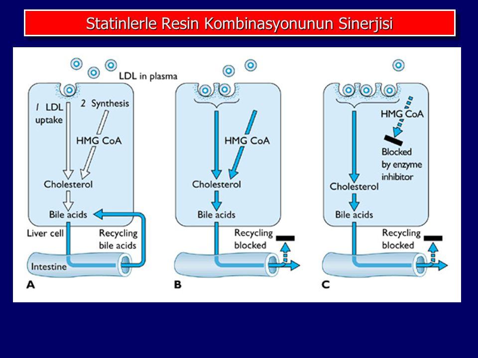 Statinlerle Resin Kombinasyonunun Sinerjisi
