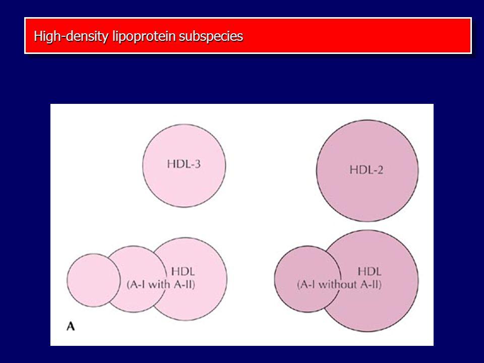 High-density lipoprotein subspecies High-density lipoprotein subspecies