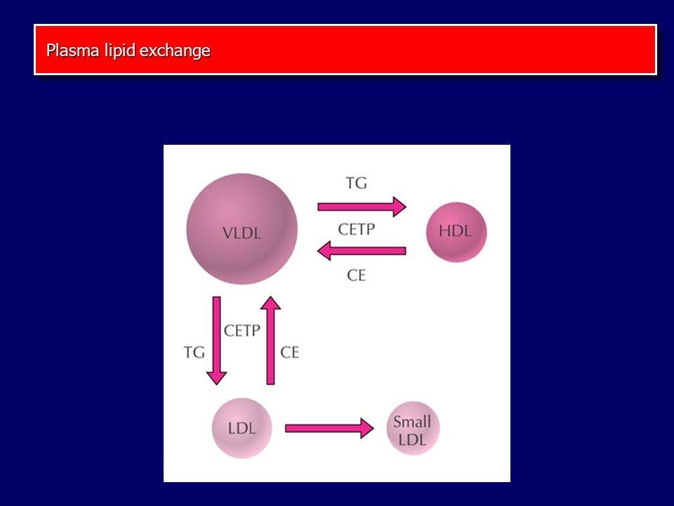 Plasma lipid exchange Plasma lipid exchange