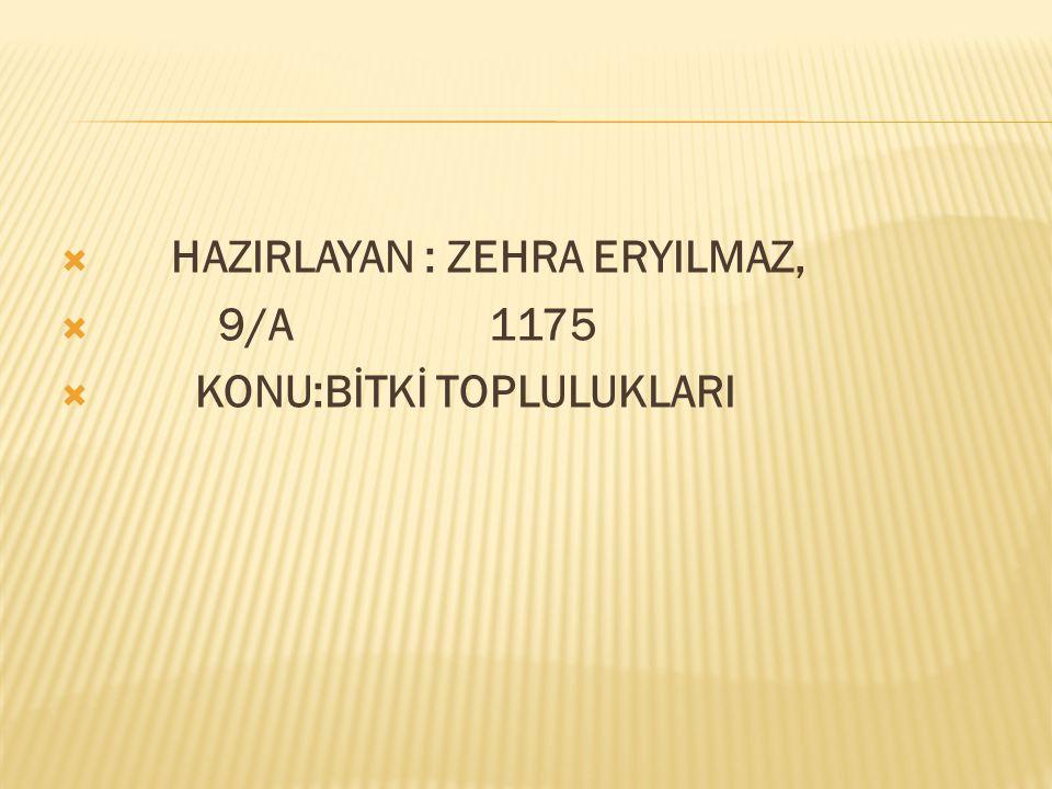  HAZIRLAYAN : ZEHRA ERYILMAZ,  9/A 1175  KONU:BİTKİ TOPLULUKLARI