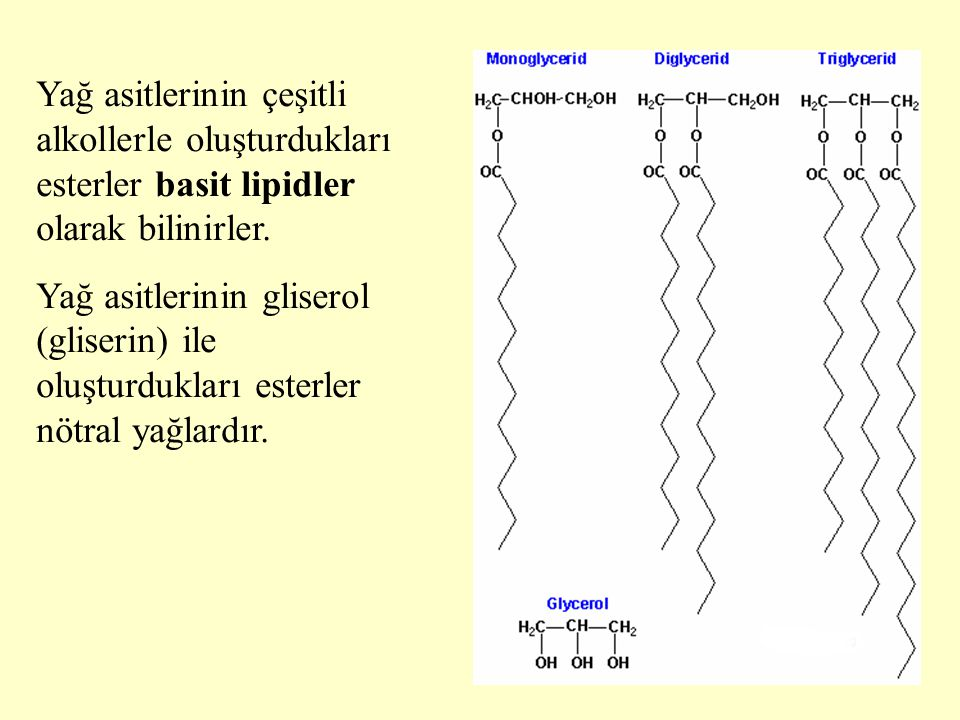 11 Yağ asitlerinin çeşitli alkollerle oluşturdukları esterler basit lipidler olarak bilinirler. Yağ asitlerinin gliserol (gliserin) ile oluşturdukları