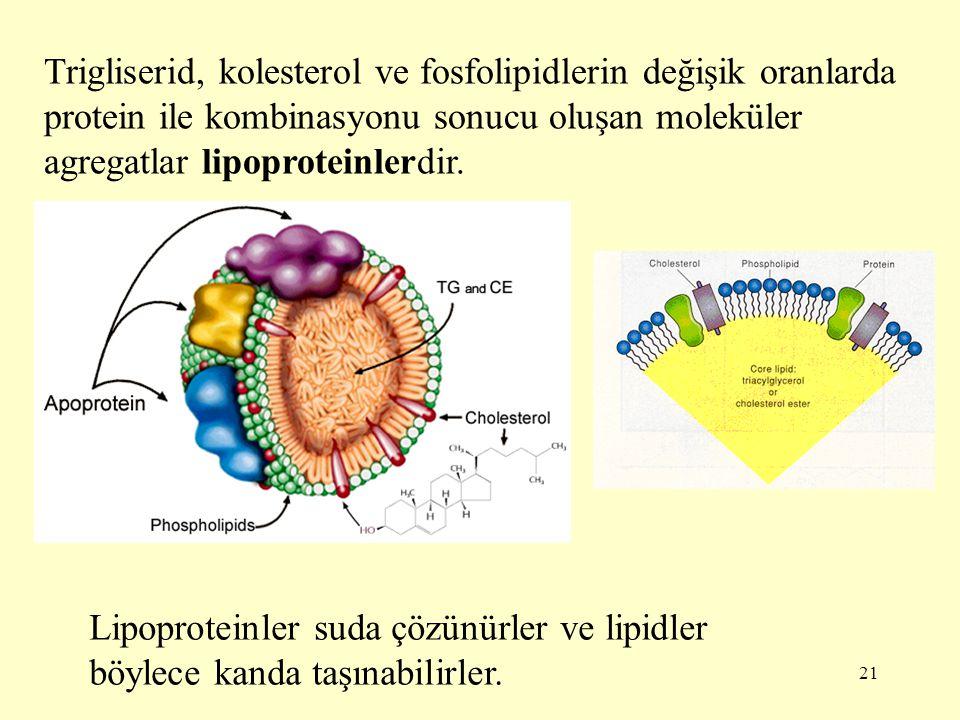 21 Trigliserid, kolesterol ve fosfolipidlerin değişik oranlarda protein ile kombinasyonu sonucu oluşan moleküler agregatlar lipoproteinlerdir. Lipopro