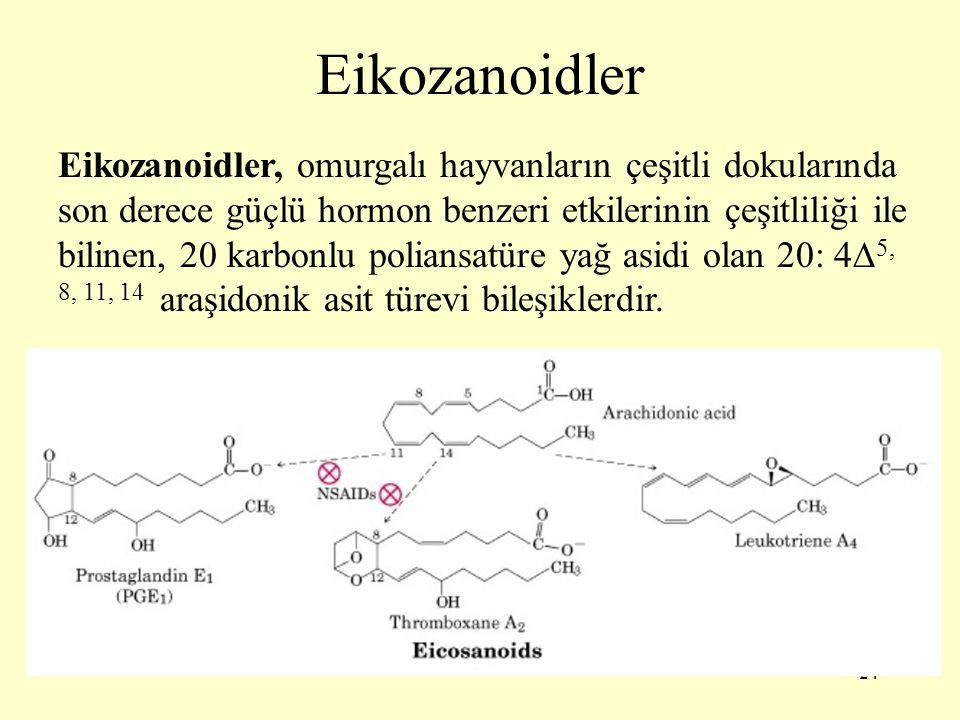 24 Eikozanoidler Eikozanoidler, omurgalı hayvanların çeşitli dokularında son derece güçlü hormon benzeri etkilerinin çeşitliliği ile bilinen, 20 karbonlu poliansatüre yağ asidi olan 20: 4  5, 8, 11, 14 araşidonik asit türevi bileşiklerdir.