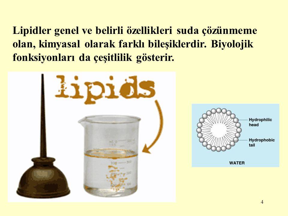 4 Lipidler genel ve belirli özellikleri suda çözünmeme olan, kimyasal olarak farklı bileşiklerdir. Biyolojik fonksiyonları da çeşitlilik gösterir.