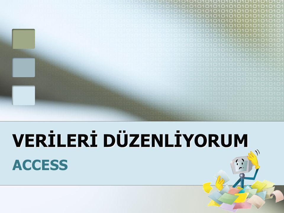 VERİLERİ DÜZENLİYORUM ACCESS