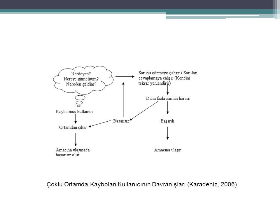 Çoklu Ortamda Kaybolan Kullanıcının Davranışları (Karadeniz, 2006)