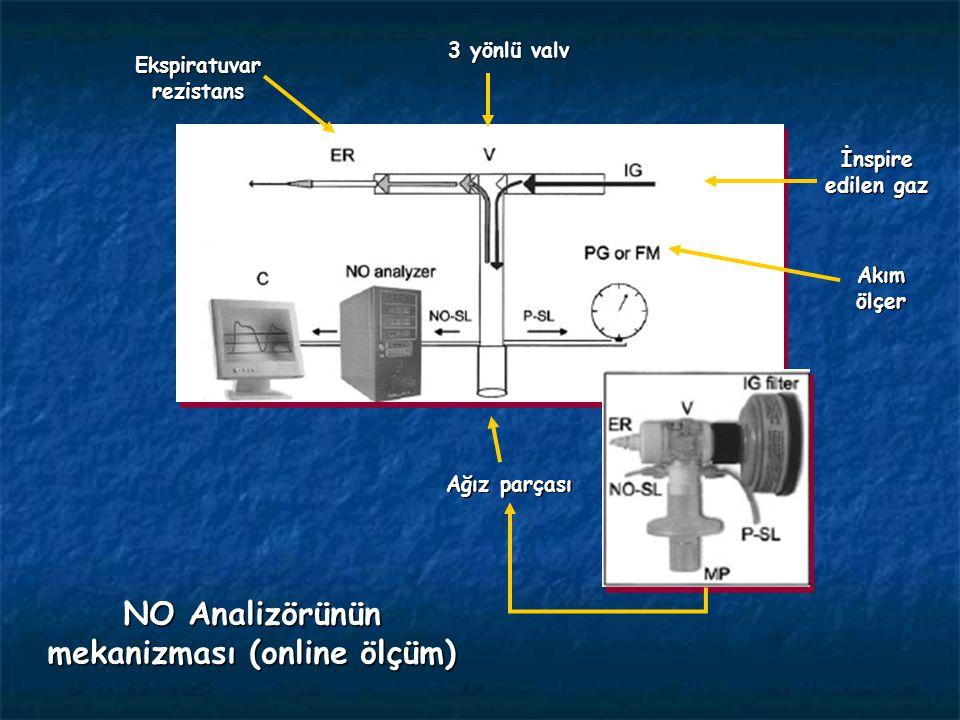Ağız parçası Ekspiratuvar rezistans İnspire edilen gaz Akım ölçer 3 yönlü valv NO Analizörünün mekanizması (online ölçüm)