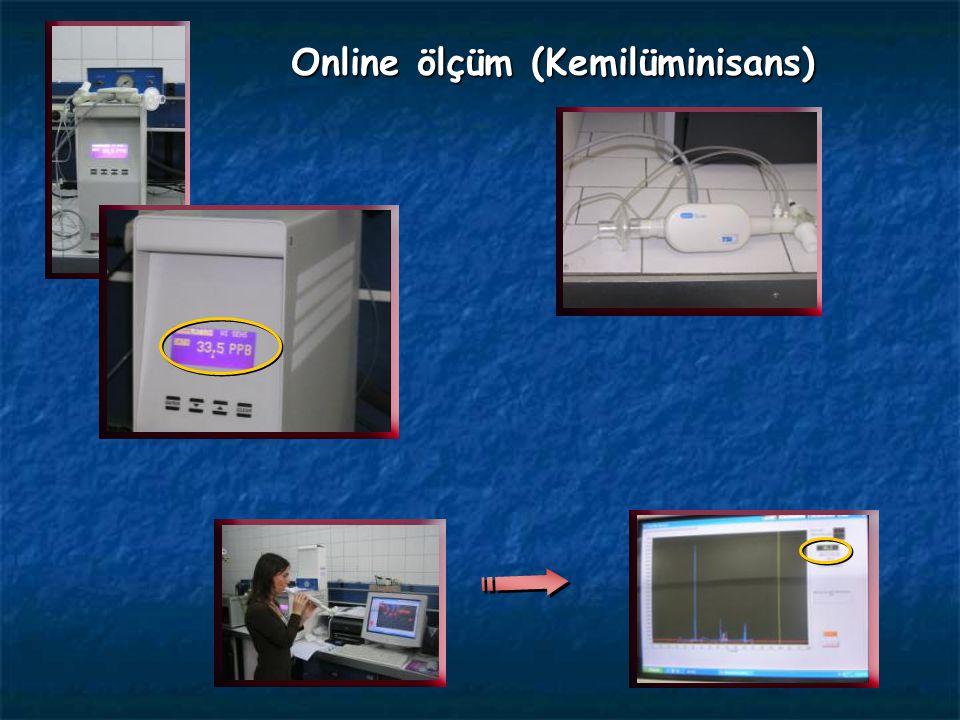 Online ölçüm (Kemilüminisans)