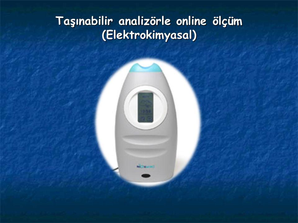 Taşınabilir analizörle online ölçüm (Elektrokimyasal)