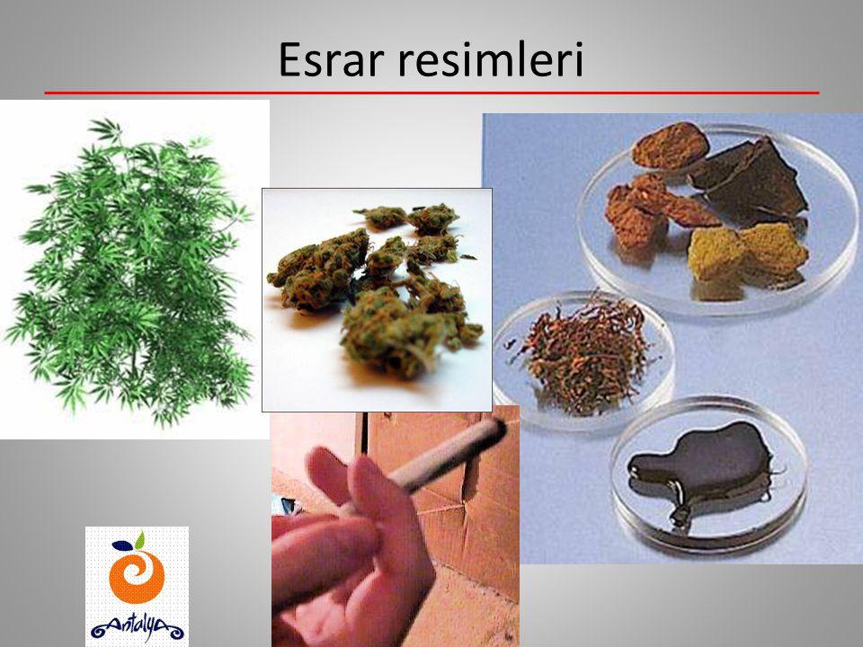 Esrar Esrar hint kenevirinden elde edilen bir maddedir. Esrar sigara tütünü ile karıştırılır ve sigara yapılarak içilir. Esrara genellikle ot, joint v