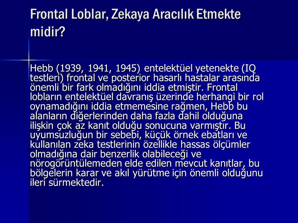 Frontal Loblar, Zekaya Aracılık Etmekte midir? Hebb (1939, 1941, 1945) entelektüel yetenekte (IQ testleri) frontal ve posterior hasarlı hastalar arası