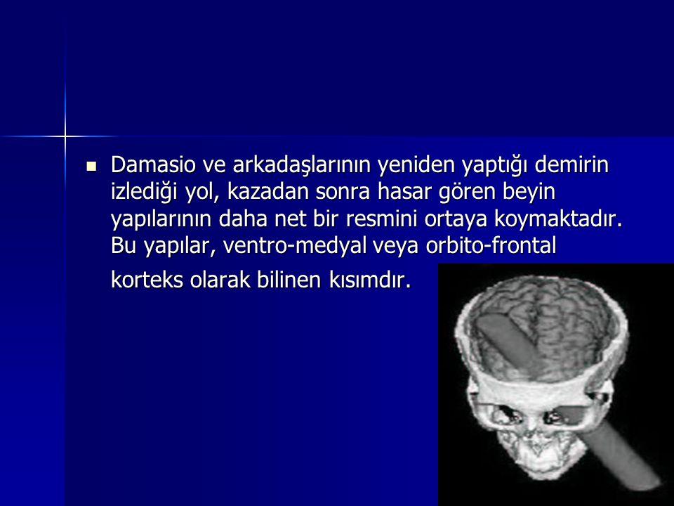 Damasio ve arkadaşlarının yeniden yaptığı demirin izlediği yol, kazadan sonra hasar gören beyin yapılarının daha net bir resmini ortaya koymaktadır. B