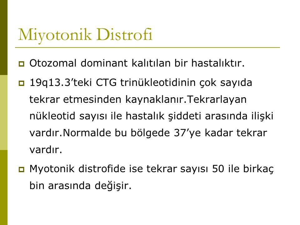 Miyotonik Distrofi  Otozomal dominant kalıtılan bir hastalıktır.  19q13.3'teki CTG trinükleotidinin çok sayıda tekrar etmesinden kaynaklanır.Tekrarl
