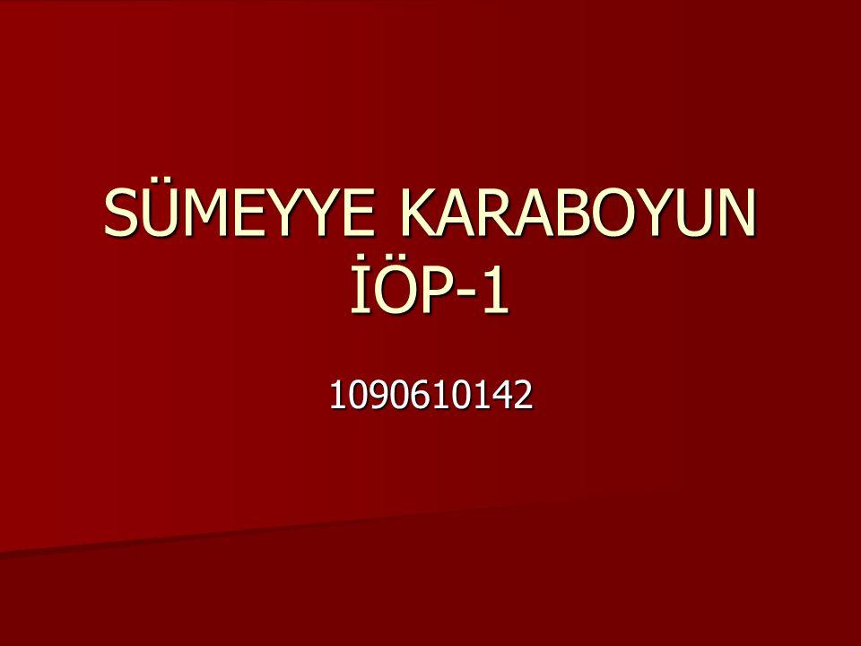 SÜMEYYE KARABOYUN İÖP-1 1090610142