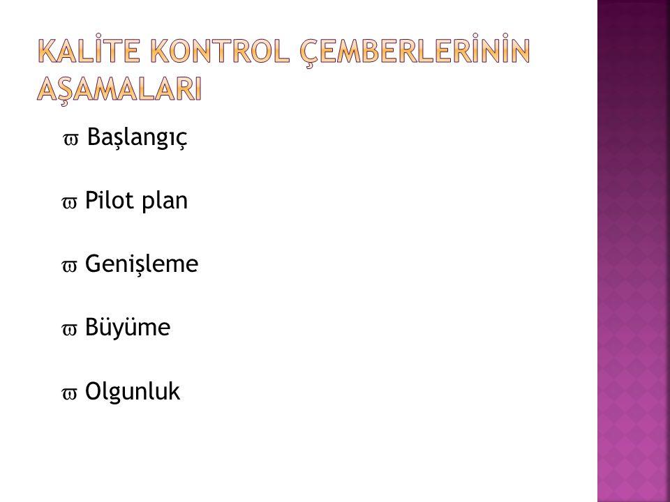  Başlangıç  Pilot plan  Genişleme  Büyüme  Olgunluk