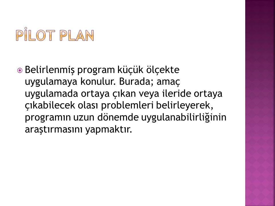  Belirlenmiş program küçük ölçekte uygulamaya konulur.