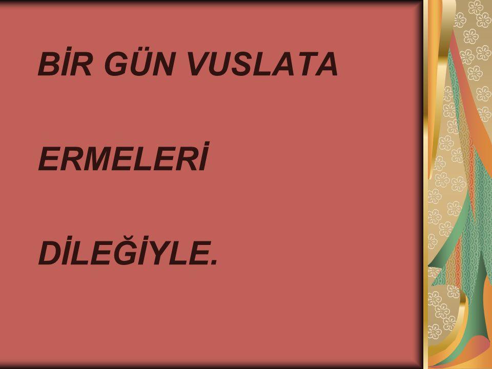 BİR GÜN VUSLATA ERMELERİ DİLEĞİYLE.