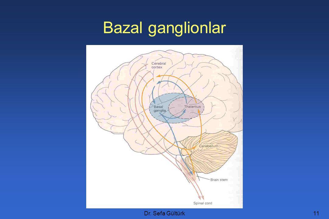 Dr. Sefa Gültürk11 Bazal ganglionlar