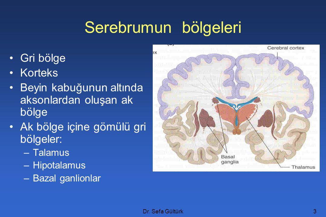 Dr. Sefa Gültürk3 Serebrumun bölgeleri Gri bölge Korteks Beyin kabuğunun altında aksonlardan oluşan ak bölge Ak bölge içine gömülü gri bölgeler: –Tala