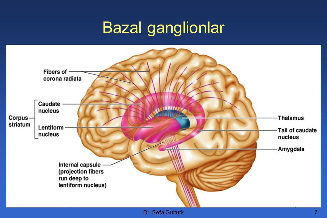 Dr.Sefa Gültürk18 S. nigranın dopaminerjik liflerini N.