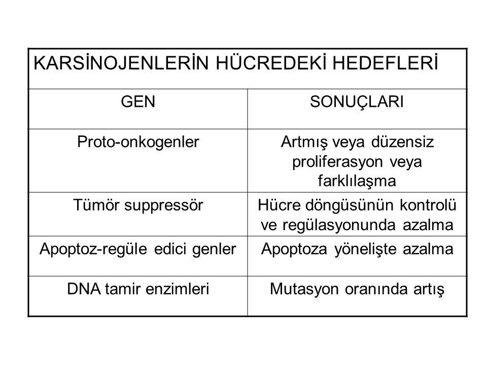 GENOTOKSİK KARSİNOJENLERİN DNA İLE İNTERAKSİYONU KARSİNOJENDNA ile İNTERAKSİYON Kimyasal karsinojenler Aromamatik aminlerC-8 ve N-2 Guanin ürünleri N-6 Adenin ürünleri Polisiklik hidrokarbonlarN-2 guanin ürünler N-2 adenin Metilleyici ajanlarO-6 guanin ürünleri O-2, O-4 timin ürünleri Depürinasyon Aflatoksin B1N-7 guanin ürünleri Fiziksel karsinojenler Ultraviolet radyasyonTimin-timin dimerleri Tek veya çift iplik kırıkları Proteinlerin DNA ile çapraz bağlanmaları İyonize radyasyonTek veya çift iplik kırıkları Proteinlerin DNA ile çapraz bağlanmaları