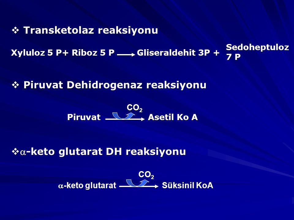  Transketolaz reaksiyonu Xyluloz 5 P+ Riboz 5 P Gliseraldehit 3P +  Piruvat Dehidrogenaz reaksiyonu Piruvat Asetil Ko A  -keto glutarat DH reaksiyonu  -keto glutarat Süksinil KoA Sedoheptuloz 7 P CO 2