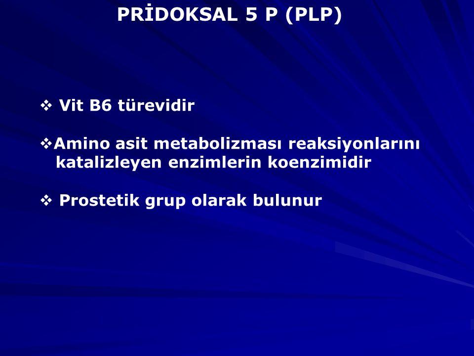 PRİDOKSAL 5 P (PLP)  Vit B6 türevidir  Amino asit metabolizması reaksiyonlarını katalizleyen enzimlerin koenzimidir  Prostetik grup olarak bulunur