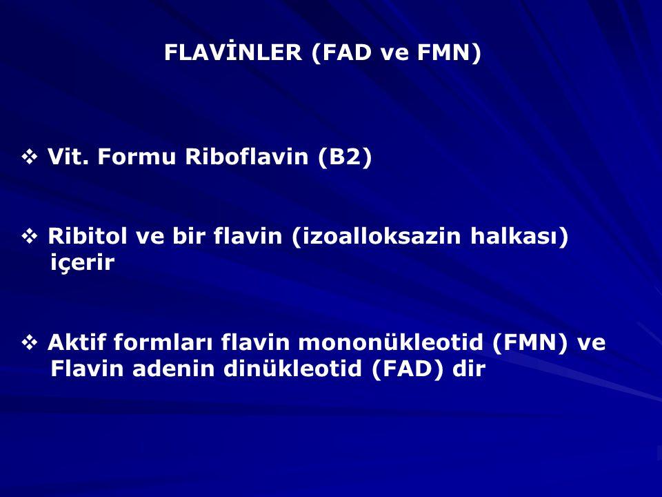 FLAVİNLER (FAD ve FMN)  Vit.