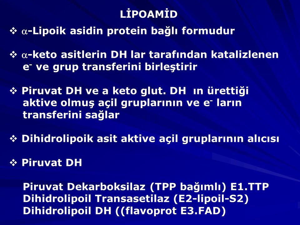 LİPOAMİD  -Lipoik asidin protein bağlı formudur  -keto asitlerin DH lar tarafından katalizlenen e - ve grup transferini birleştirir  Piruvat DH ve a keto glut.