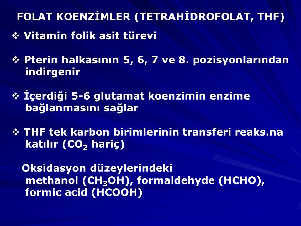 FOLAT KOENZİMLER (TETRAHİDROFOLAT, THF)  Vitamin folik asit türevi  Pterin halkasının 5, 6, 7 ve 8.