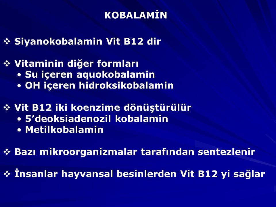 KOBALAMİN  Siyanokobalamin Vit B12 dir  Vitaminin diğer formları Su içeren aquokobalamin OH içeren hidroksikobalamin  Vit B12 iki koenzime dönüştürülür 5'deoksiadenozil kobalamin Metilkobalamin  Bazı mikroorganizmalar tarafından sentezlenir  İnsanlar hayvansal besinlerden Vit B12 yi sağlar