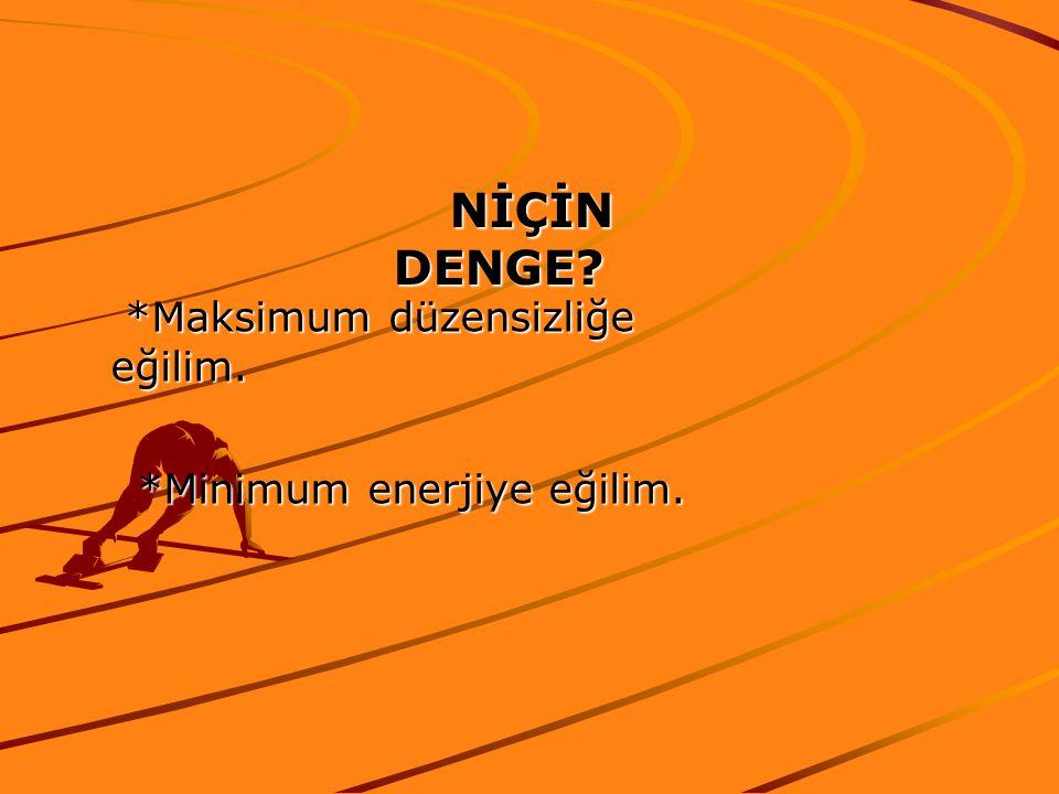 NİÇİN DENGE? NİÇİN DENGE? *Maksimum düzensizliğe eğilim. *Maksimum düzensizliğe eğilim. *Minimum enerjiye eğilim.