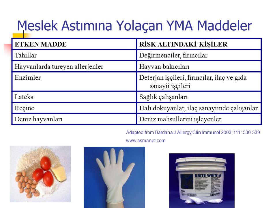 Meslek Astımına Yolaçan YMA Maddeler ETKEN MADDERİSK ALTINDAKİ KİŞİLER TahıllarDeğirmenciler, fırıncılar Hayvanlarda türeyen allerjenlerHayvan bakıcıl