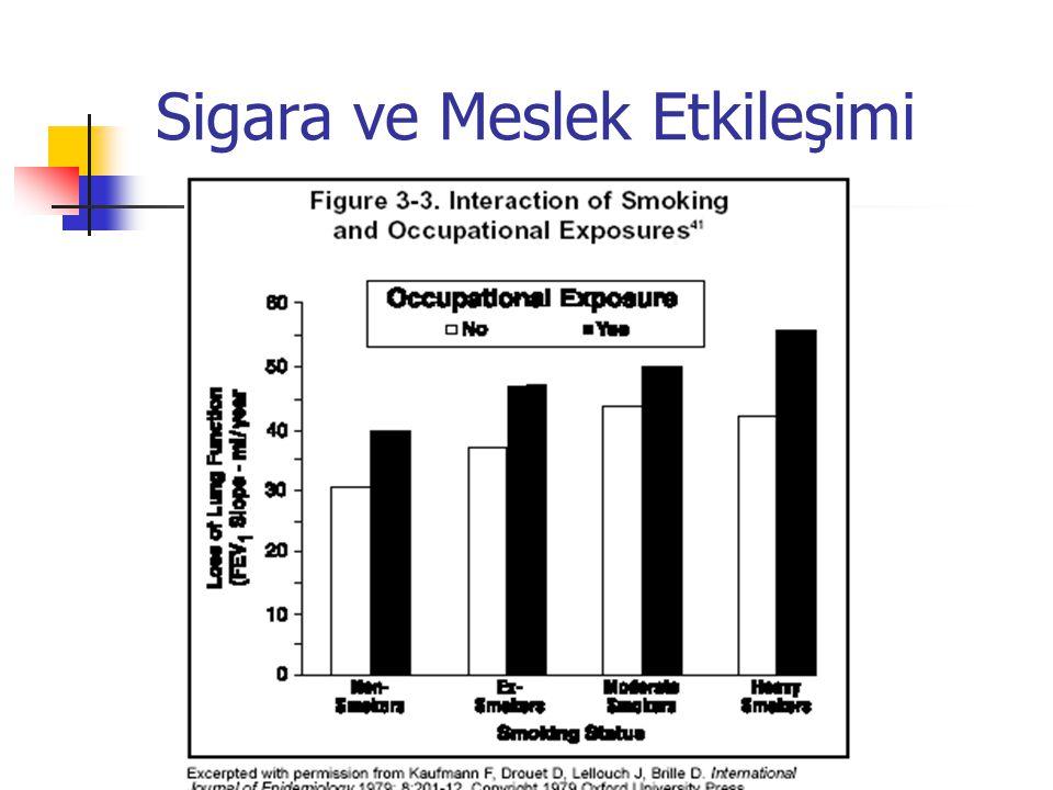 Sigara ve Meslek Etkileşimi