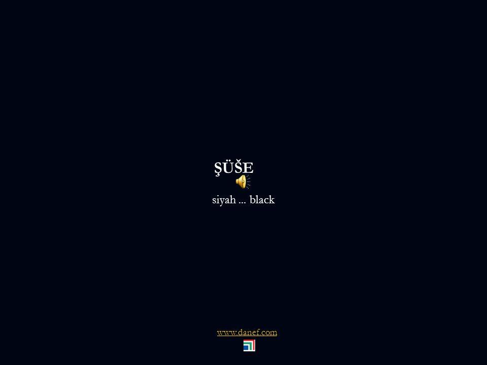 ŞÖXER ŞÖXER Ali İhsan TARI İnş. Yük. Müh. F5 tuşu slaytları çalıştırmaktadır. naje@danef.com