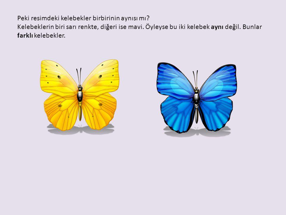 Peki resimdeki kelebekler birbirinin aynısı mı? Kelebeklerin biri sarı renkte, diğeri ise mavi. Öyleyse bu iki kelebek aynı değil. Bunlar farklı keleb