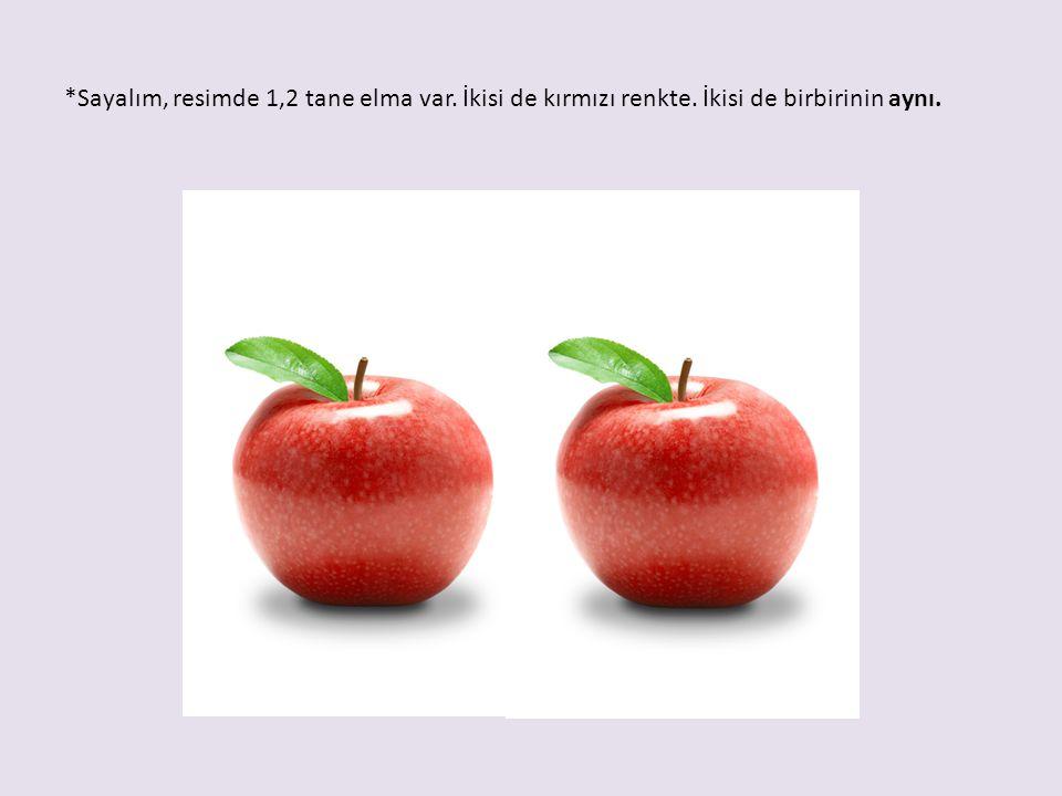 *Sayalım, resimde 1,2 tane elma var. İkisi de kırmızı renkte. İkisi de birbirinin aynı.