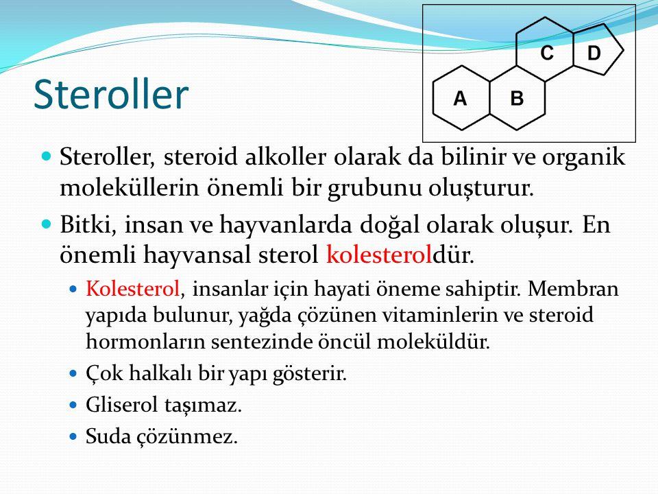 Glikolipidler Glikolipidler, lipidlerin –OH uçlarına karbonhidrat birimlerinin bağlanması ile oluşan lipidlerdir. Görevleri enerji sağlamak ve hücrese