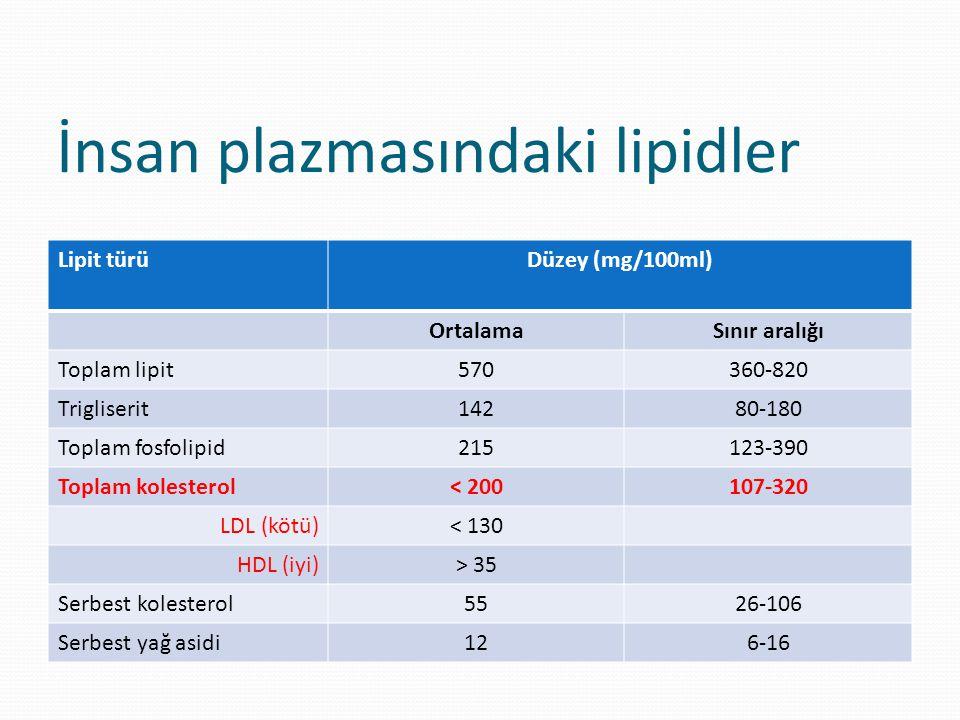 Lipoproteinlerin sınıflandırılması