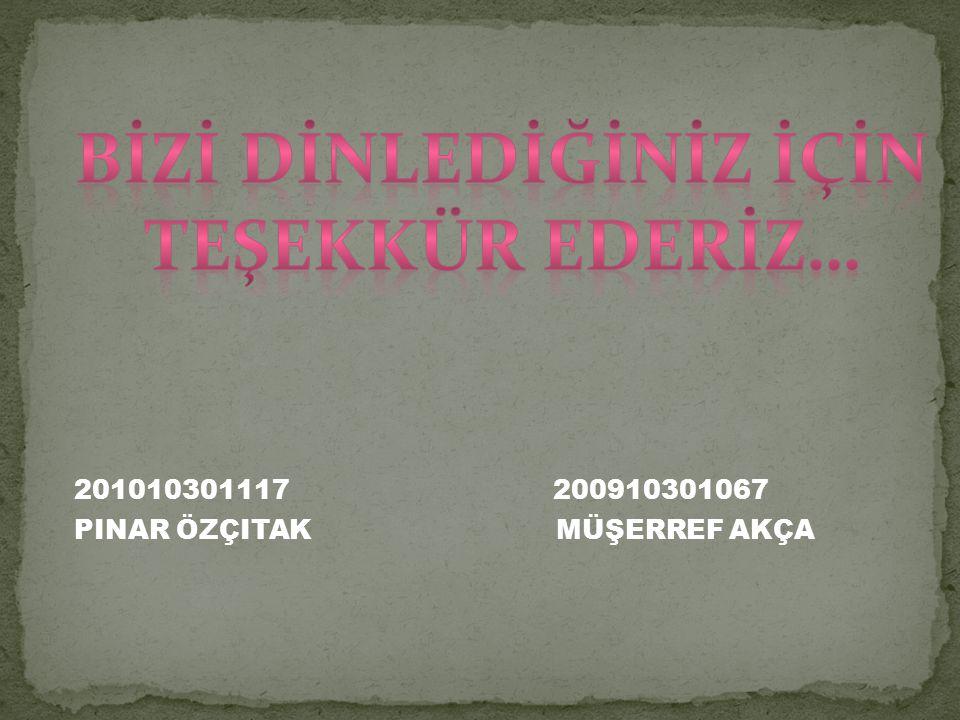 201010301117 200910301067 PINAR ÖZÇITAK MÜŞERREF AKÇA