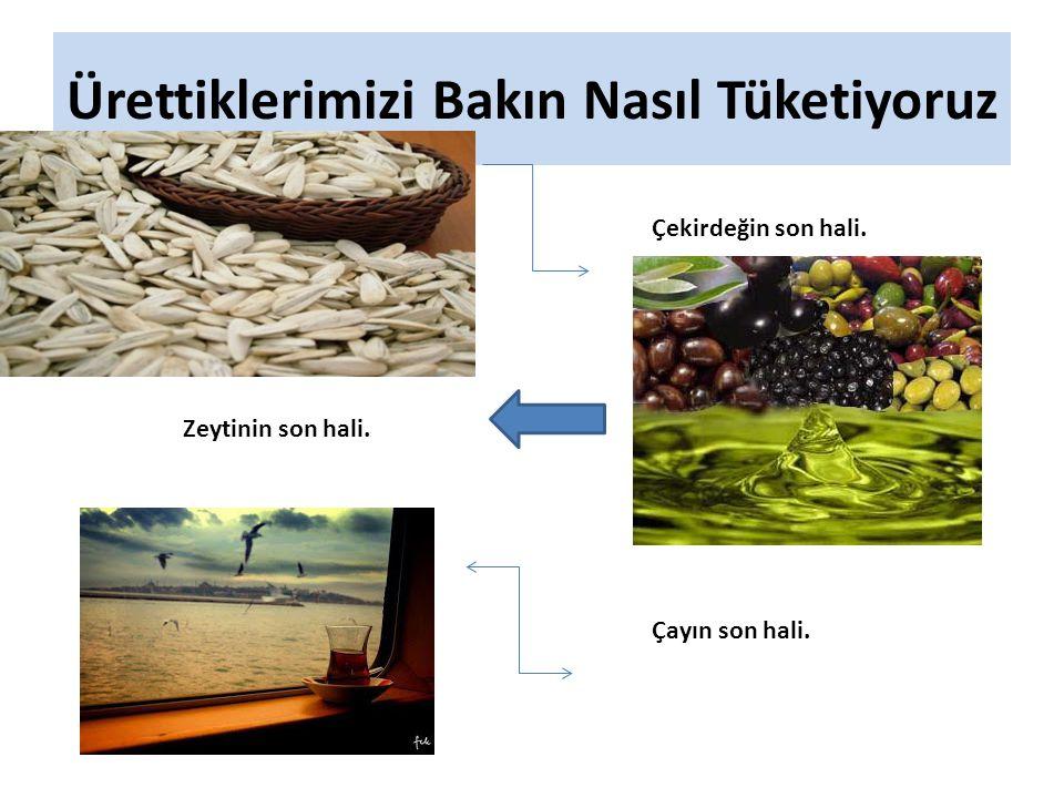 Ürettiklerimizi Bakın Nasıl Tüketiyoruz Çekirdeğin son hali. Zeytinin son hali. Çayın son hali.