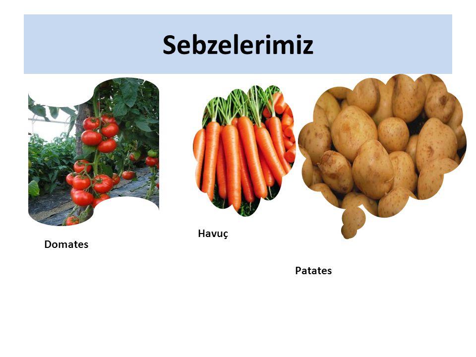Sebzelerimiz Domates Havuç Patates