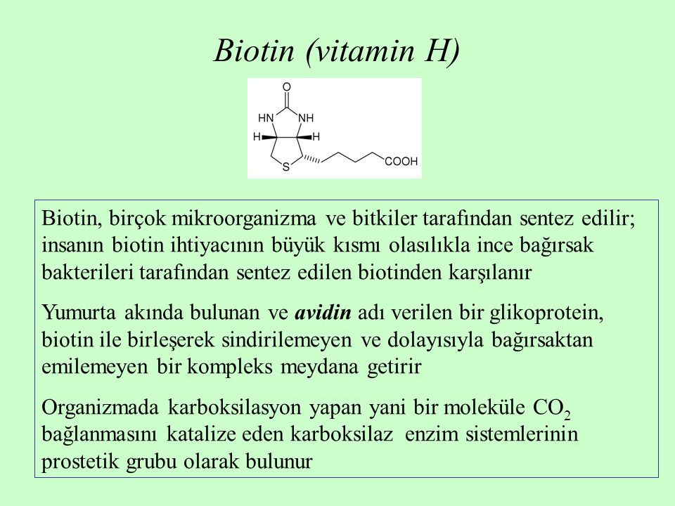 Biotin (vitamin H) Biotin, birçok mikroorganizma ve bitkiler tarafından sentez edilir; insanın biotin ihtiyacının büyük kısmı olasılıkla ince bağırsak