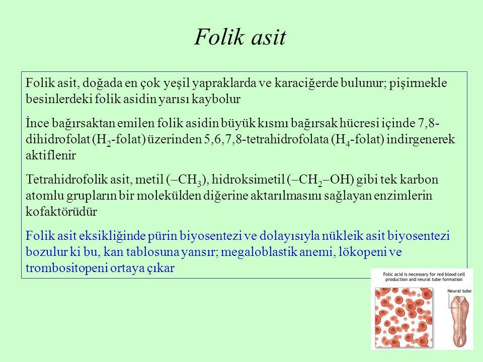 Folik asit Folik asit, doğada en çok yeşil yapraklarda ve karaciğerde bulunur; pişirmekle besinlerdeki folik asidin yarısı kaybolur İnce bağırsaktan e