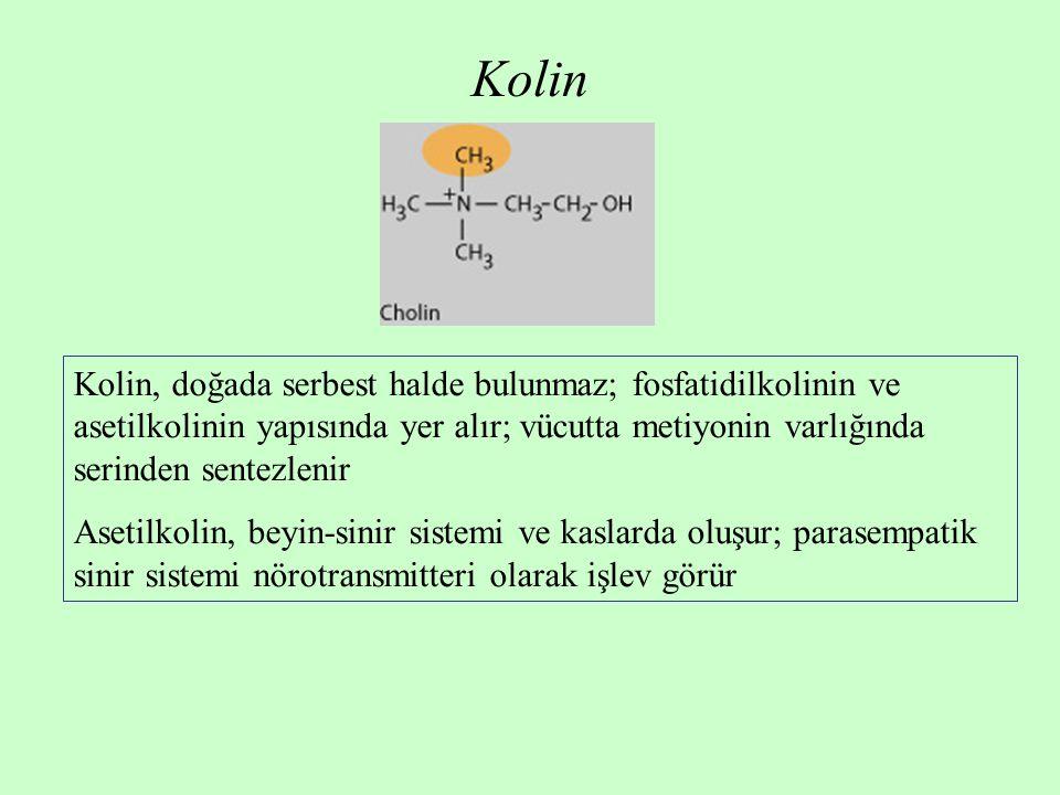 Kolin Kolin, doğada serbest halde bulunmaz; fosfatidilkolinin ve asetilkolinin yapısında yer alır; vücutta metiyonin varlığında serinden sentezlenir A