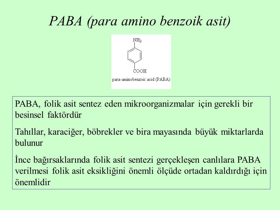 PABA (para amino benzoik asit) PABA, folik asit sentez eden mikroorganizmalar için gerekli bir besinsel faktördür Tahıllar, karaciğer, böbrekler ve bi