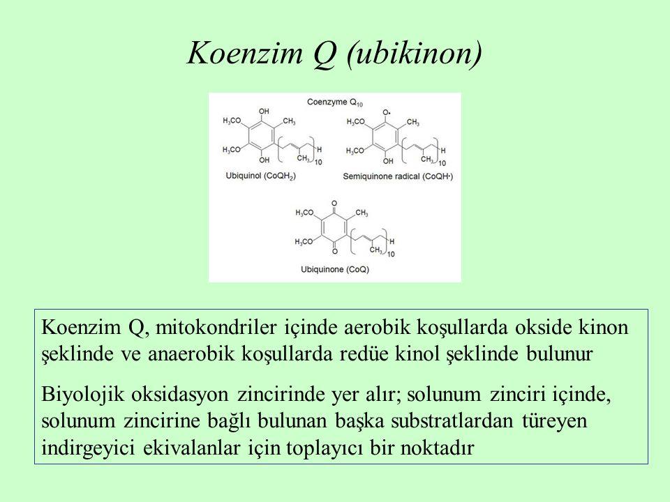 Koenzim Q (ubikinon) Koenzim Q, mitokondriler içinde aerobik koşullarda okside kinon şeklinde ve anaerobik koşullarda redüe kinol şeklinde bulunur Biy