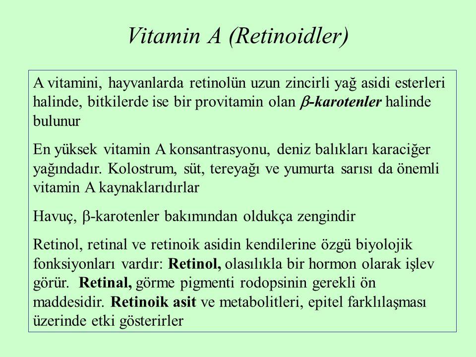 Vitamin A (Retinoidler) A vitamini, hayvanlarda retinolün uzun zincirli yağ asidi esterleri halinde, bitkilerde ise bir provitamin olan  -karotenler